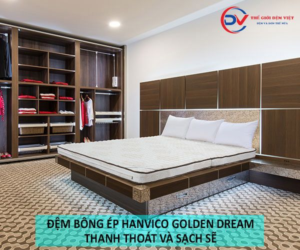 đệm bông ép Hanvico Golden Dream