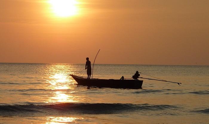 Giải mã giấc mơ câu cá