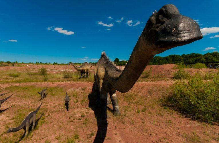 Mơ thấy khủng long là điềm báo gì? Giải mã giấc mơ khủng long