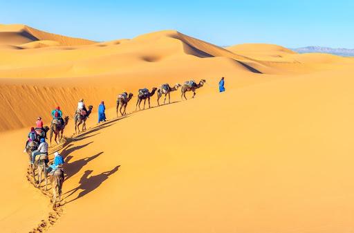 Thấy sa mạc có ý nghĩa thế nào? Thông điệp từ sa mạc